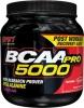 Комплекс незаменимых аминокислот BCAA-Pro 5000 фирмы SAN